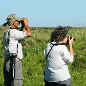 Avistaje de aves - Birdwatching